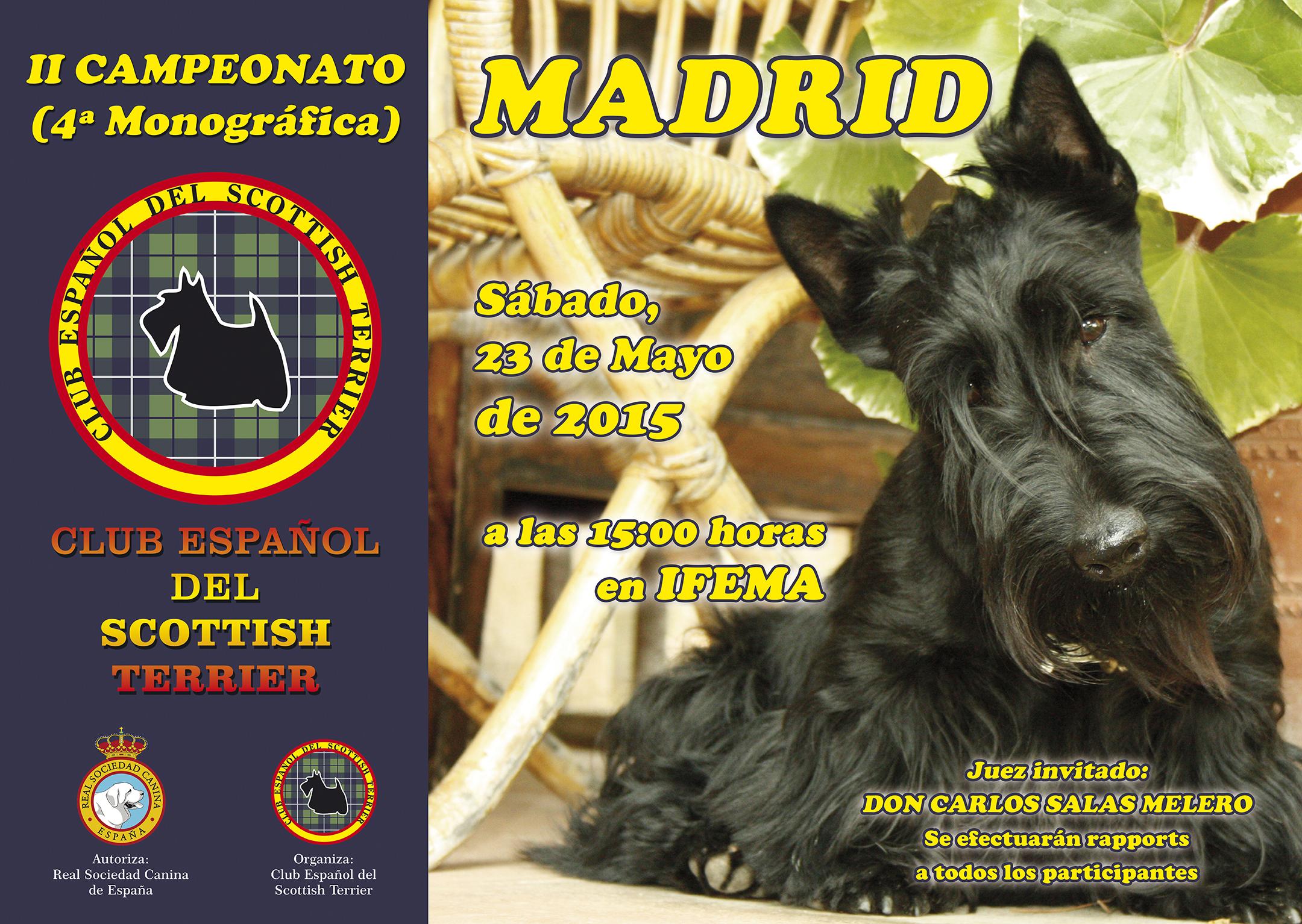 IV Concurso Monografico Madrid cara A